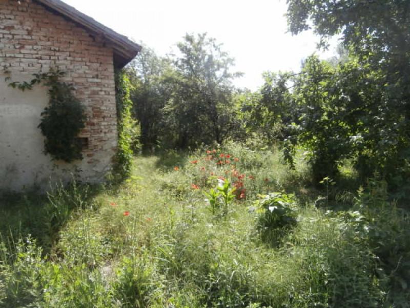 Стопански двор в село Мокрище